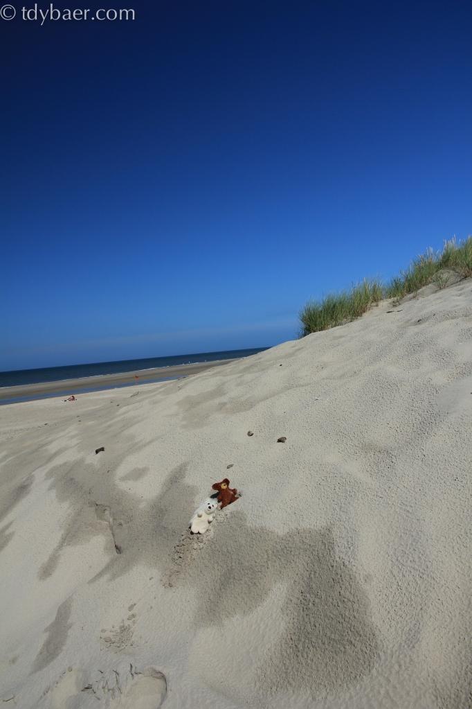 Im Sand versteckt.