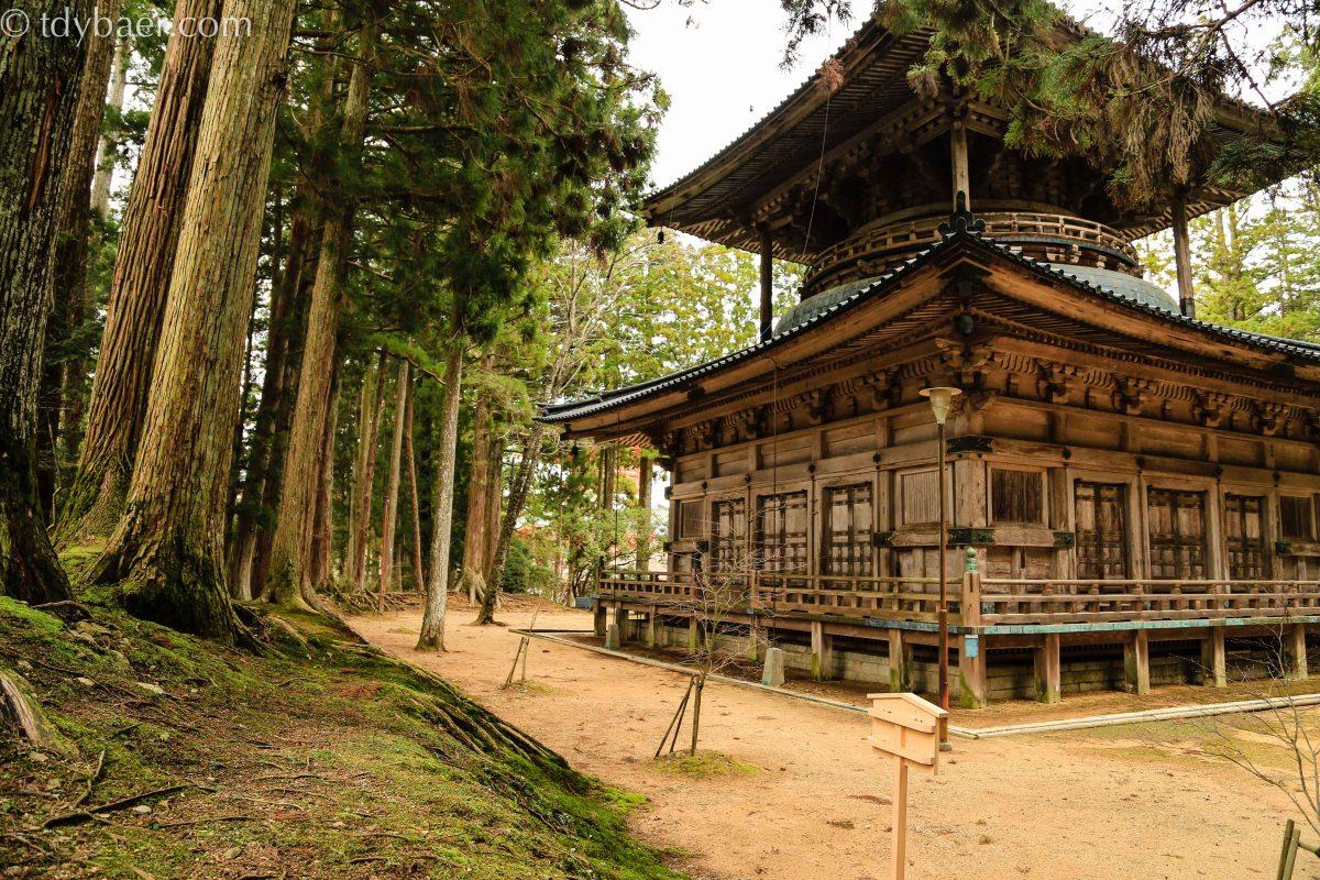 31.03.14 - Koya-san: Alte Tempelanlagen und ehrwürdige Gräber unter riesigen Zedern