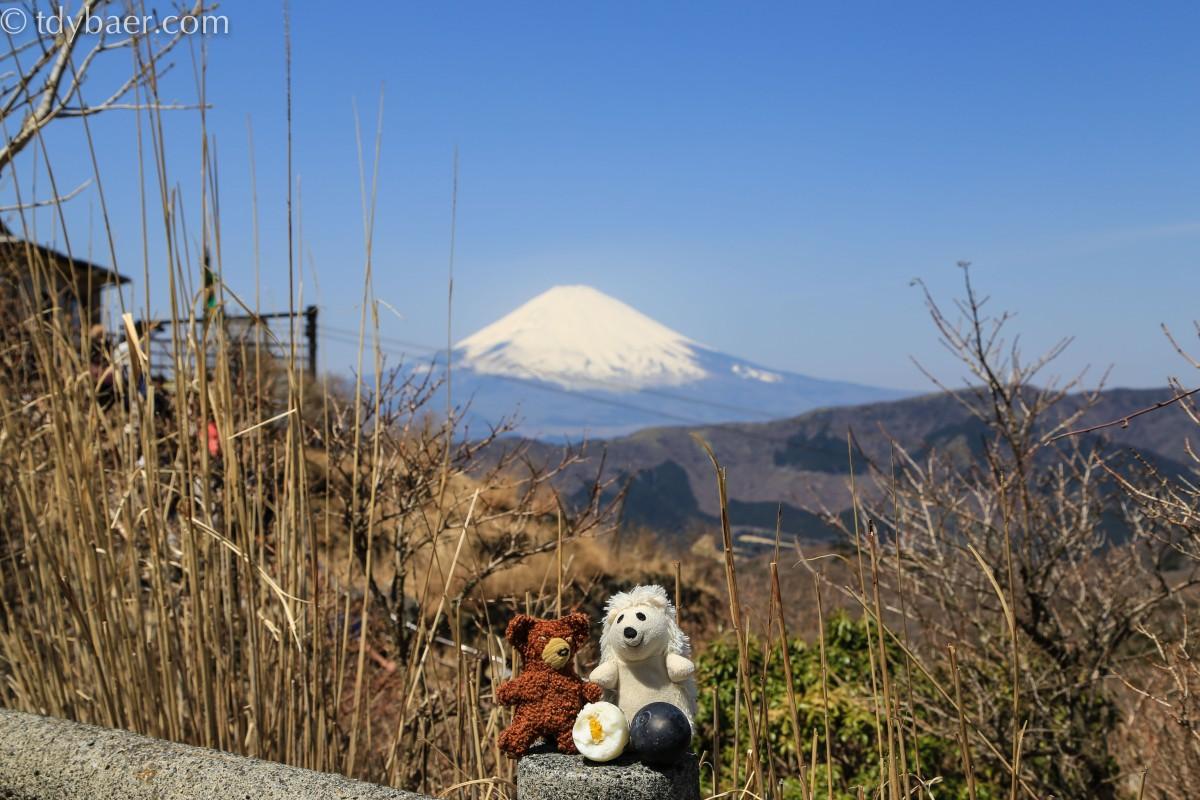 07.04.14 - Piratenschiffe, Vulkaneier und eine bunte Nacht in Tokyo