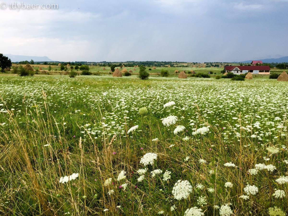 26.07.15 - Bunte Holzkirchen auf dem Weg nach Cluj